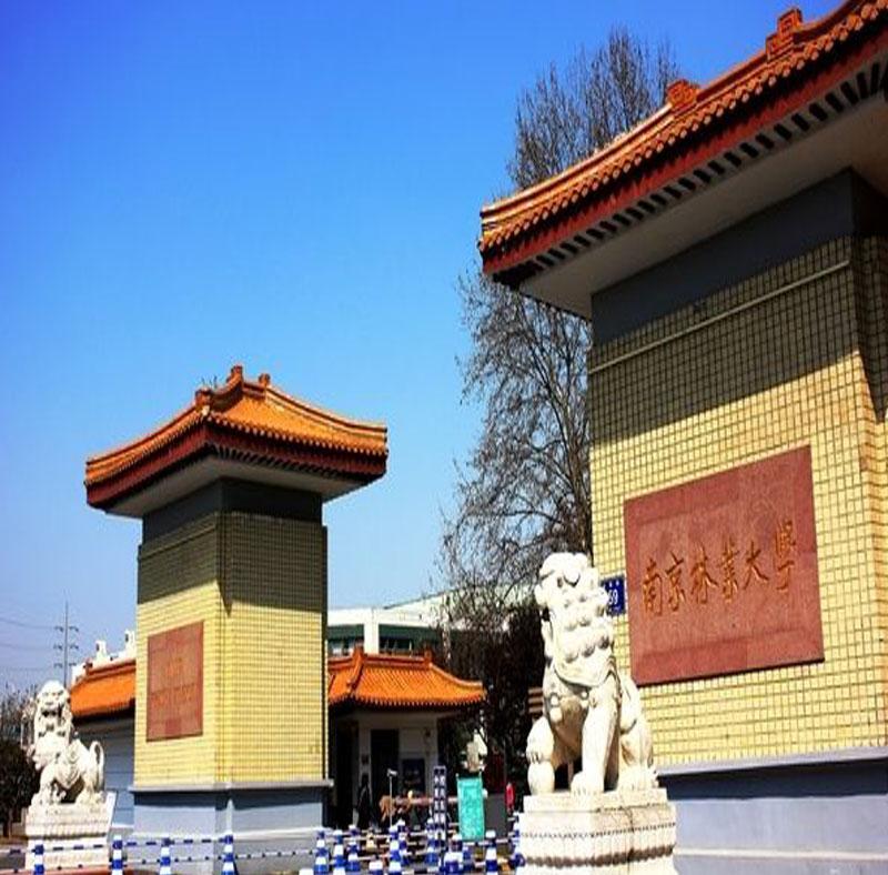 南京林业大学第三食堂